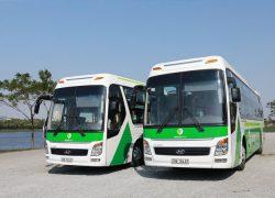 xe-green-bus-di-sapa