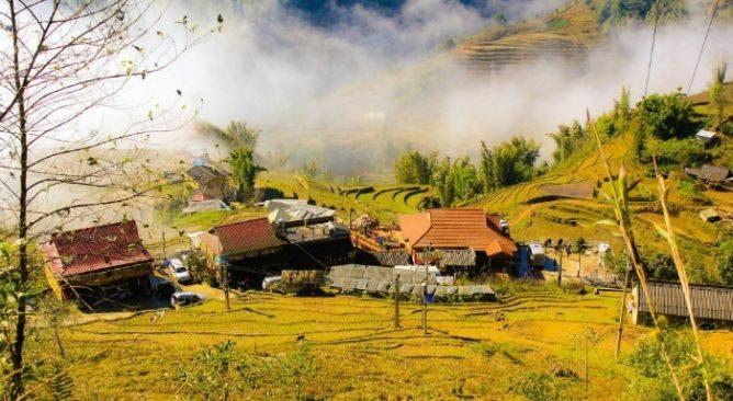 Sapa mùa lúa chín trên bản làng, sắc vàng ngả óng dưới những đám sương mù, khói bếp, ảo diệu và bình yên